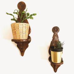 #urbanjungle #plants Planter Pots, Collection, Plant Pots