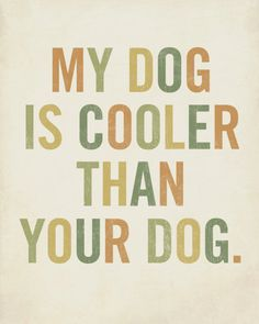 my dog is cooler than your dog. #quote #words #inspiration #dog