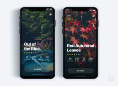 Custom tour discovery app   daily ui challenge 32 365