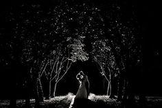 I really like this photo!  hoffer-photography-moonlight-wedding-photo.jpg (600×400)
