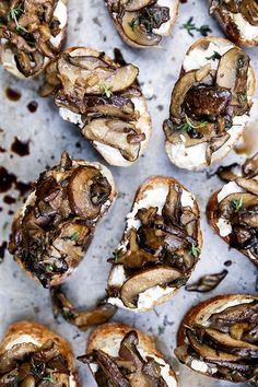 Mushroom and Goat Cheese Crostini is part of Thanksgiving appetizers Mushrooms - A recipe for bruschetta with goat cheese, sautéed mushrooms and shallots These are a great party appetizer! Holiday Appetizers, Appetizer Recipes, Holiday Foods, Thanksgiving Appetizers, Recipes Dinner, Burger Bar, Appetisers, Goat Cheese, Cheese Pastry