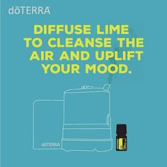 Diffuse Lime to cleanse the air and uplift your mood.
