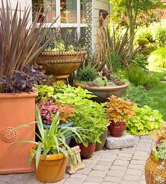 Gather multiple potted plants to create the splendor of an in-ground border in a spot where gardening is otherwise impossible. Using containers, you can fill a space with beautiful color and texture that rivals earthbound planting beds. - Sun and Garden