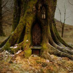 Prosjekt 365 / 4 #345 #onephotoaday #fairytale #house #tree #nature #creative #conseptual #hildring #baroniet #kvinnherad #photography  photo @jorunlarsen