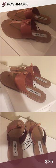 Olivia Tan Steve Madden Sandals Never worn. Love this color! Steve Madden Shoes Sandals