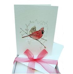 Winter Cardinals Blank Greeting Cards Set by WildlifeGardenerArt