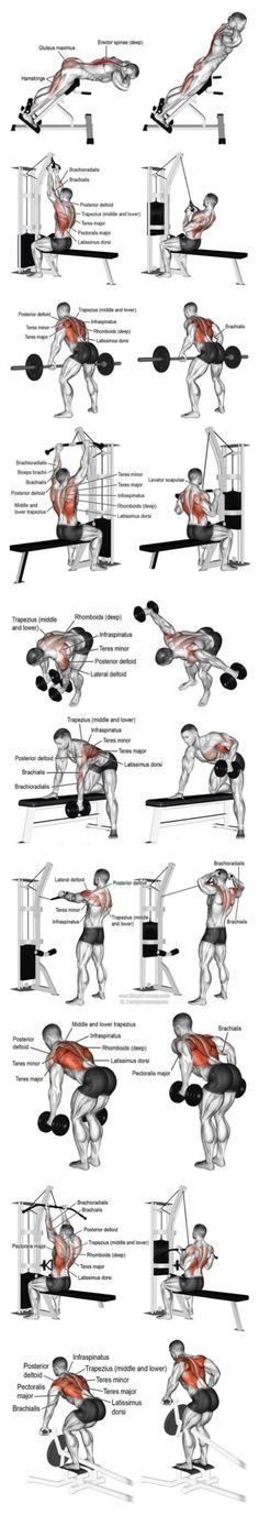 20 Killer Back Exercises For A Defined, V-Tapered Back. Building a great back is tricky business, mainly due to it not being a mirror muscle worked. This can make for lack of mind-muscle connection and overall lack of muscular development. These 5 killer back exercises can dramatically change the shape of your back – and create some mile-wide lats!