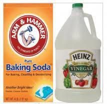 Share your baking soda vinegar uses for cleaning, luandry and stain removal for in and around the home, and also read tips about how others use vinegar and baking soda together. Baking Soda Cleaning, Baking Soda Vinegar, Vinegar Uses, Baking Soda Shampoo, Baking Soda Uses, Cleaning Pet Urine, Teach Dog Tricks, Natural Kitchen, Drain Cleaner