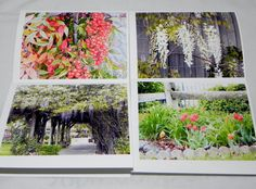 Four Floral Greeting Cards by EJRPhotography on Etsy, $8.00