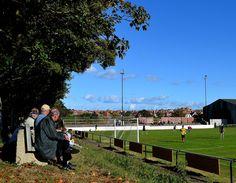 Swanage Town & Herston Hampshire, Soccer, Football, Sports, Hs Sports, Futbol, Futbol, Hampshire Pig, American Football