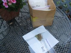 In late summer, Nature has a way of reproducing each plant and all you have to do is take notice of how it's done naturally. The seeds! Here is a simple seed saving system I use.     Take a good look at your flowers and vegetable plants and