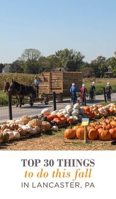 Fall Brings Cooler Weather And Beautiful Foliage To Enjoy Fall In Love With Autumn Here In Lancaster Pa In 2020 Things To Do Lancaster Autumn Activities
