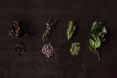 How to make wilderness tea — Let's Go Slow Heather Flower, Taste Of Nature, Homemade Tea, Tea Strainer, How To Make Tea, Fresh Green, Wilderness, Pink Flowers, Tea Lights