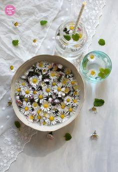 Unkrautgenuss: Fastenbeugel mit Gänseblümchenaufstrich - sugar&rose Regional, Plant Parts, Harvest Season, Weed, Medicinal Plants, Spreads