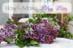 Let's make some Lilac Wine.  I am not completely done with the process, but it's going well and I'm confident enough to share what I've done.  I roughly followed the instructions from here.  Start now by saving your lilacs.  You can store them in the freezer until you have enough, then give them a second …