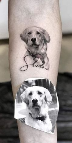 100 Adorable Dog Tattoos That Will Melt Your Heart - Tattoo Me Now Wörter Tattoos, Body Art Tattoos, Celtic Tattoos, Tattos, Small Dog Tattoos, Tattoos Of Dogs, Dog Paw Tattoos, Tattoo Lower Back, Chien Jack Russel