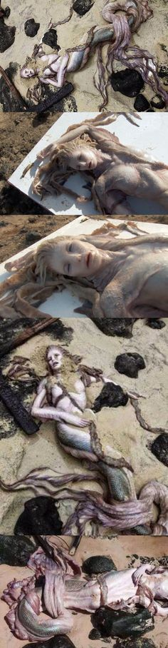 Mermaid supposedly found on Egyptian shores or Bulgaria (It is hard to find the source online). It may or not be fake but they sure made this thing look pretty real. The mystery is still inconclusive.