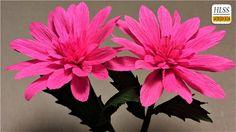 How to make dahlia paper flower| diy dahlia crepe paper flower making tutorials| paper crafts - YouTube