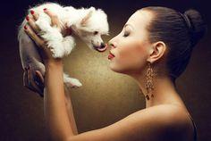 Découvrez pourquoi le chien a tendance à lécher son maître, et ce que vous pouvez faire pour l'empêcher de prendre de mauvaises habitudes