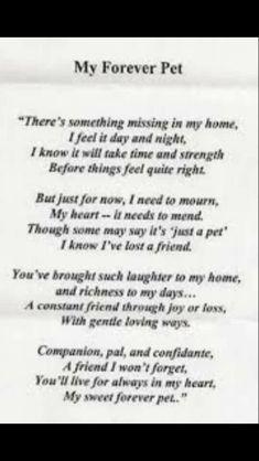 Memorial Poem for #dogs
