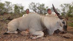 African safari - OUTDOORSMAN.com