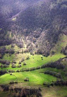 Landscape - Iran, Tabriz, Horand , Niyag Forest