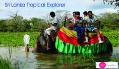 Discover things to see and do, places to stay and more in Sri Lanka. Plan your holiday to Sri Lanka with Next Travellia #srilanka #srilankatour #tour #holiday #travel #srilankatravel