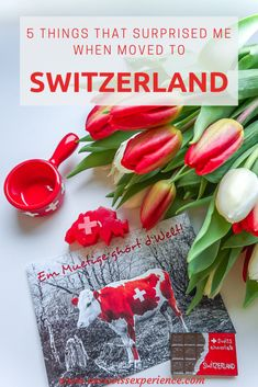 10 things that surprised me when moved to Switzerland pin Swiss Chocolate, Surprise Me, Travel With Kids, Switzerland, Simple, Crafts, Diy, Decorations, Ideas