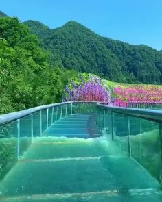 A beautiful ride in the Gold Dragon Waterworld China. Beautiful Places To Travel, Cool Places To Visit, Places To Go, Romantic Travel, Water Slides, The Good Place, Travel Inspiration, Travel Destinations, Travel Photography