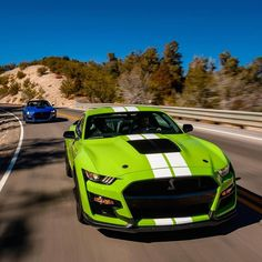 Developing technology and new cars technologies, actual car news, of your car problems and solutions. All of them and more than on begescars. Ford Mustang Bullitt, Ford Mustang Shelby Cobra, Ford Mustangs, Ford Gt500, Ford Mustang Shelby Gt500, Mustang Cars, Maserati, Bugatti, Lamborghini