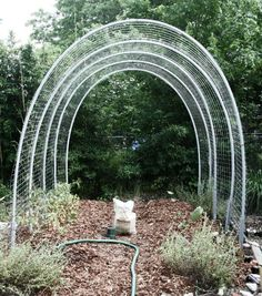DIY Ultimate tomato hoop house (good for other vegetables too - cucumbers, peas