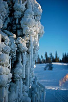 Vinter i Sverige - Dalarna