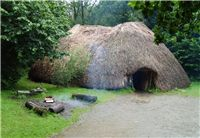 The Vikings in Ireland 9th to 12th Century