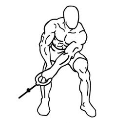 Bent Over Lateral Cable Raises 1