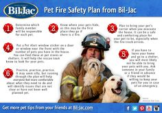 Check out these fire safety tips compliments of the Red Cross, so you're ready for any emergency! Fire Safety Tips, Dog Safety, Fire Prevention, Red Cross, Pet Health, Training Tips, Firefighter, Good To Know, Your Pet