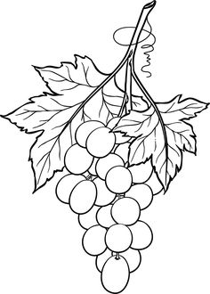 Free Printable Originally Designed: September 2010 Remastered: January 2017 Original artwork by Beccy Muir, all rights reserved. Tole Painting, Fabric Painting, Colouring Pages, Coloring Books, Grape Drawing, Rosemaling Pattern, Doodle Pages, Leaf Template, Fruit Art