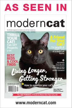 The Cat Ball is featured in the Spring/Summer 2013 Issue of Modern Cat Magazine. Cat Magazine, Cat Accessories, Kindred Spirits, Cat Health, Cool Beds, Pet Grooming, Live Long, Dog Cat, Modern