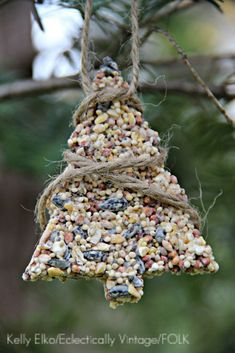 birdseed ornaments - simple recipe and look great hanging from those bare branches