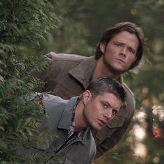 Jared e Jensen ❤