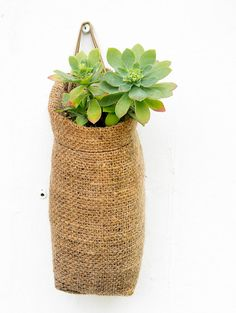 Set of 4 Hanging Basket Burlap Hanging Baghanging planter Coffee Sacks, Garden Pavilion, Flower Bag, Sack Bag, Burlap Flowers, Hanging Flowers, Coir, Flower Planters, Canning Jars