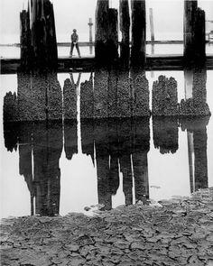 Wynn Bullock - Boy Fishing, 1959