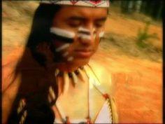Pachuly & Friends -Der Ruf Der Metasequoia-
