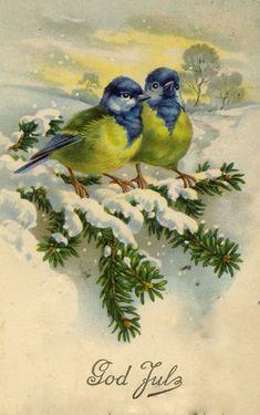 Ideas for christmas bird illustration vintage cards