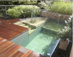 Eco-Friendly Pool - Chlorine can be damaging to hair and skin. This breathtaking eco-friendly pool is a perfect solution.