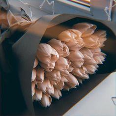Love Surprise, Luxury Flowers, Flower Aesthetic, My Flower, Planting Flowers, Flower Arrangements, Beautiful Flowers, Pictures, Gifts