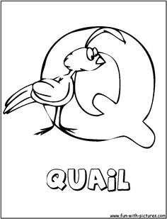 Animal Alphabet Q Coloring Pages