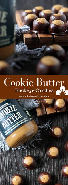 Cookie Butter Buckeye Candies www-mind-over-batter.com