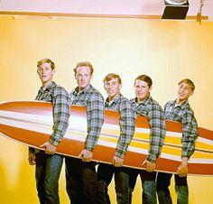 Brian Wilson • Mike Love ▪ Dennis Wilson • Carl Wilson • David Marks : The Beach Boys