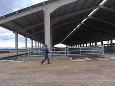 Cow Shed Design, Rinder Stall, Barn Layout, Cattle Farming, Concrete Structure, Metal Panels, Animal House, Windmill, Compost
