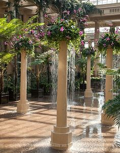 longwood_orchid_pillars    Love the idea of fountains in unexpected places.